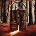 двери в лес